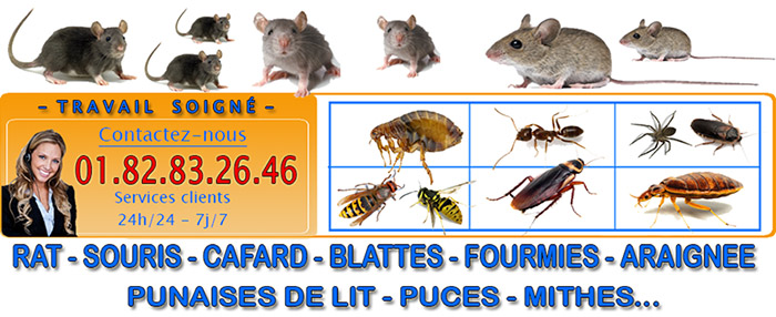 Punaises de lit Les Mureaux 78130