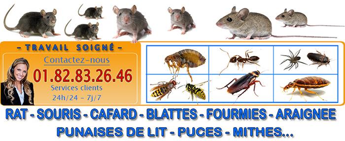 Punaises de lit Vaureal 95490